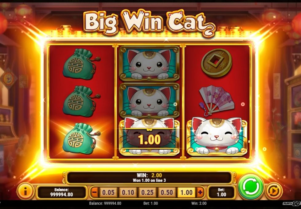 PlayN Go slots Big Win Cat