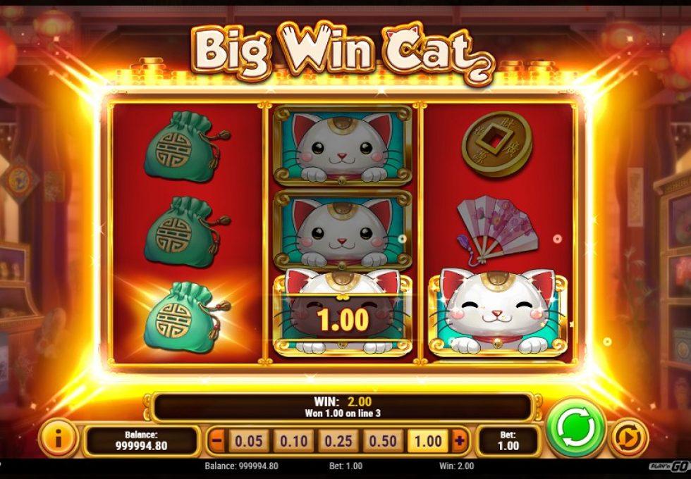PlayN Go slots Big Win Cat